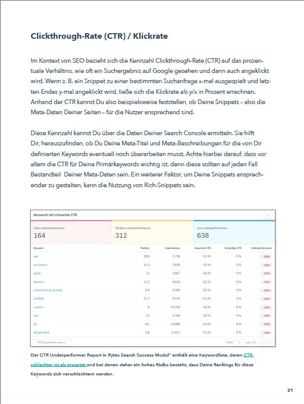 SEO-Reporting Ebook Vorschau 5